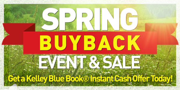 Spring Buyback: ID# 5001